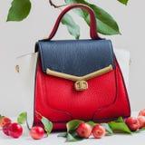 Women& à la mode x27 ; sac à main de s de trois couleurs du plan rapproché de peau, fond clair, décoré des pommes rouges Photos libres de droits