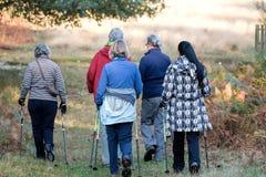 Women& x27; 在远足的s走的小组通过公园 库存图片
