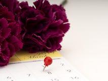 Women';在日历的s天与红色别针 免版税库存图片