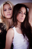 Women. Couple of beautiful women, brunette and blond Royalty Free Stock Images