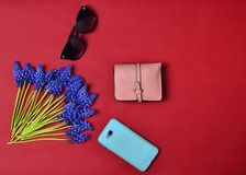 Women& x27;s accessories are lined on a red background. Smartphone, purse, sunglasses, wild flowers. Flat lay. Top view. Women accessories are lined on a red Royalty Free Stock Photography