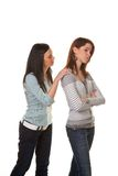 Women are angry and offended when arguing. Two young women eingeschnappt and insults in a dispute Royalty Free Stock Images