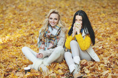Women in autumn park drink coffee Stock Photos