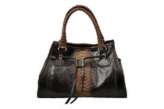 Women bag Stock Image