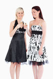 Women in beautiful dresses toasting with champaign. Smiling women in beautiful dresses toasting with champaign in a studio Stock Photo