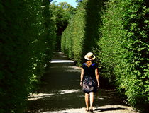 Free Women Between Hedgerows Stock Photo - 28657290