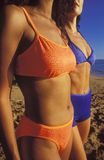 Women in bikinis. Close-up of two athletic women in bikinis Stock Images
