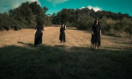 Women in black standing in a filed. Three identical woman in black standing in a yellow field royalty free stock photography