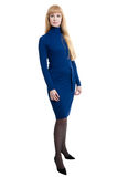 Women in blue dress Stock Photography