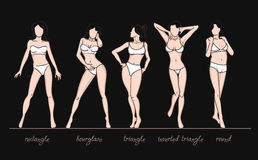 Women body shapes. What is your body shape. Vector illustration of girls' figures. Women in bathing suits Royalty Free Stock Photo