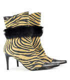 Women boot with tiger stripes Stock Photography