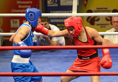Women Boxing Royalty Free Stock Photo