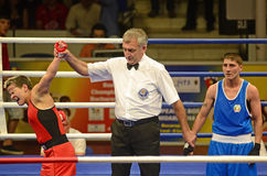Women Boxing Champion Royalty Free Stock Images