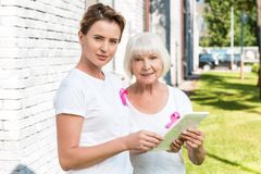 Women with breast cancer awareness ribbons using digital tablet and smiling. At camera stock image