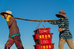 Women bringing in the fishing catch near Hoi An, Vietnam Royalty Free Stock Images