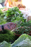 Women buying fresh vegetable Royalty Free Stock Images