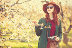 Women with camera in blossom apple tree garden Stock Image