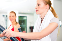 Women at cardio training in gym Royalty Free Stock Images