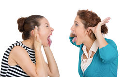 Women cat fight Stock Photography
