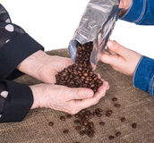 Women checking the quality of coffee beans Stock Photos