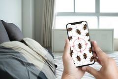 Women are checking for unusual things and detecting bed bugs in. The bedroom stock photography