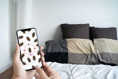 Women are checking for unusual things and detecting bed bugs in. The bedroom stock image