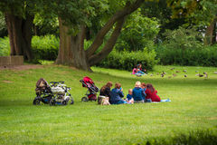 Women with children on the green lawn, Hannover, Lower Saxony, Germany. Copy space for text. Royalty Free Stock Photography