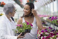 Women choosing plants Royalty Free Stock Images
