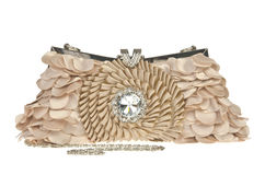 The women clutch bag Royalty Free Stock Photo