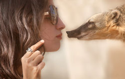 Women and coati. Young women face to face with a coati Royalty Free Stock Photography