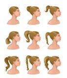 Women coiffure Stock Images