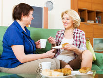 Women colleagues drinking coffe and chatting during coffee break. Two women colleagues in years drinking coffe and chatting during coffee break Royalty Free Stock Images
