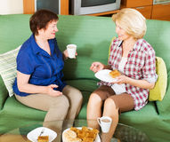 Women colleagues drinking coffe and talking during coffee break. Two women colleagues in years drinking coffe and talking during coffee break Stock Photography