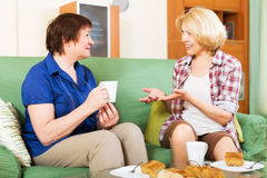 Women colleagues drinking tea and chatting during coffee break. Two women colleagues in years drinking tea and chatting during coffee break Royalty Free Stock Photography