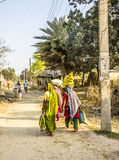 Women in colorfol sarees. Are walking along a dirt road in the terai. The terai is the most southern part of Nepal royalty free stock photography