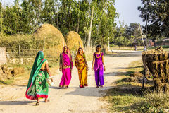 Women in colorful sarees. Beautiful women in colorful sarees are walking along a dirt road in the Terai, the most southern, warm and fruitful part of Nepal stock photos