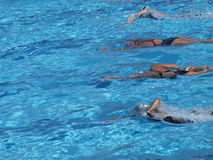 Women competition. In the swimming-pool Stock Images