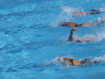 Women competition. In the swimming-pool Royalty Free Stock Photography