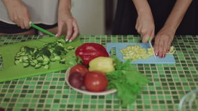Women Cooking Food on a Kitchen and Talking healthy food close up shot. Women Cooking Food on a Kitchen and Talking cut salad healthy food close up stock footage