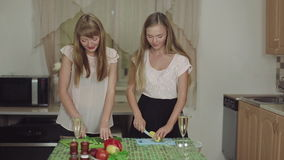 Women Cooking Food on a Kitchen and Talking healthy food. Women Cooking Food on a Kitchen and Talking cut salad healthy food stock video footage