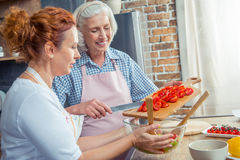 Women cooking together. Smiling women in aprons cooking together in kitchen Stock Photography