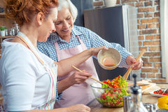 Women cooking together. Two smiling women cooking vegetable salad together Royalty Free Stock Image