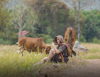 Women and cows. In green pastures n Stock Image