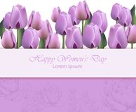 Women day card with purple tulip flowers. Vector realistic backgrounds. Women day card with purple tulip flowers. Vector realistic background vector illustration