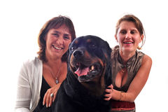 Women and dog Stock Photos