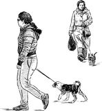 Women with the dogs Stock Images