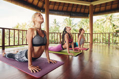Women doing cobra pose at yoga class Stock Photo