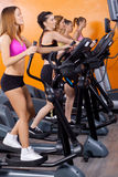 Women doing exercise Stock Image