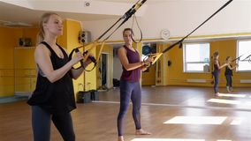 Women doing exercise on trx at fitness club. Women doing exercise with trx suspension straps at fitness club in slow motion. Healthy style concept stock video footage