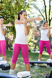 Women doing exercises Stock Photo